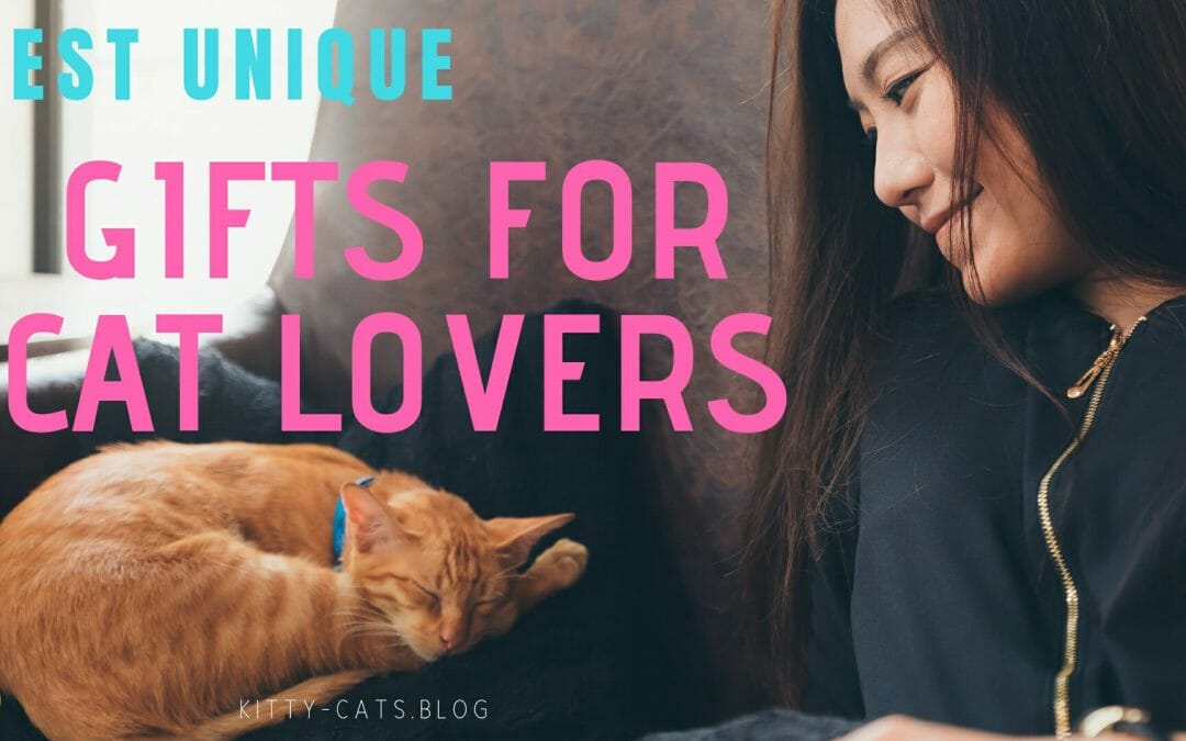 Best Unique Gifts for Cat Lovers
