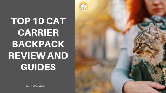 Top 10 Cat Carrier Backpack Review And Guides
