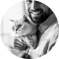 How To Treat Mange In Cats Cat Parents Guide Kitty Cats Blog